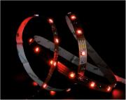 Светодиодная лента BASIC LED STRIPE RGB/W IP20 Molto Luce