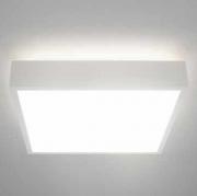 Потолочный светильник DENY R/E LED Molto Luce